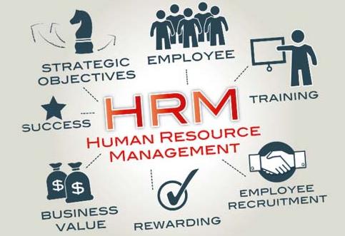 Pengertian Manajemen Sumber Daya Manusia Lengkap (Tujuan, Fungsi, Sasaran, dan Model)